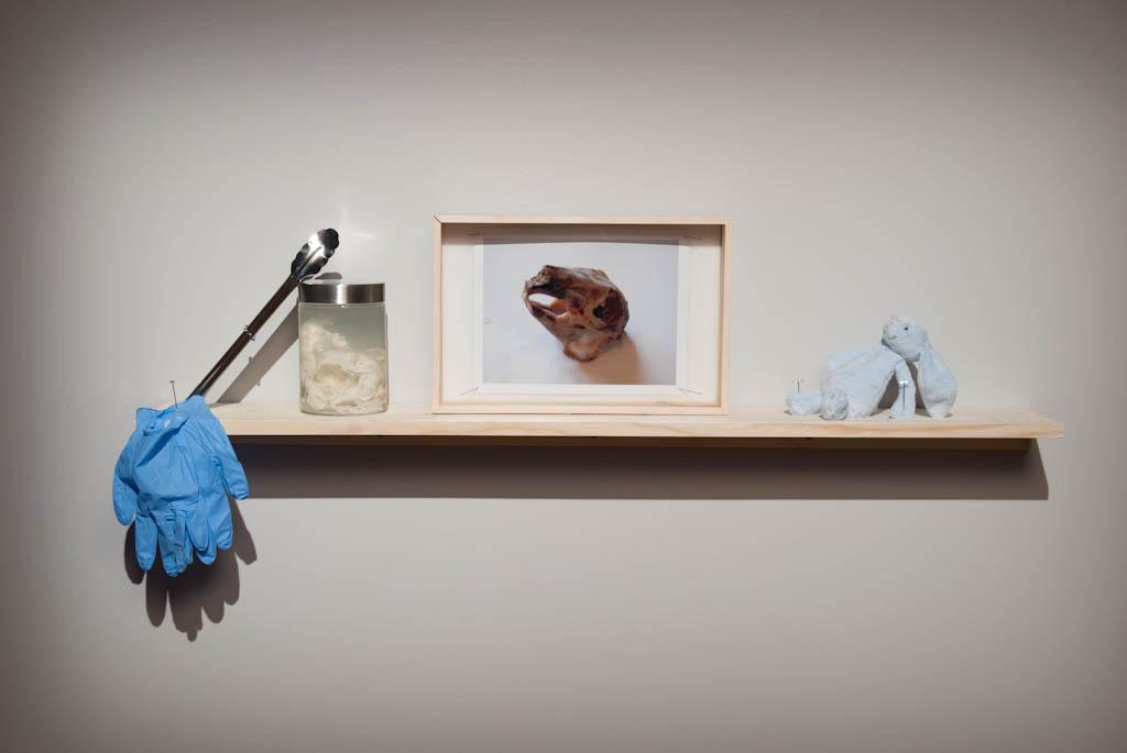 diane-dubeau-famille-de-lapins-tableaux-de-chasse