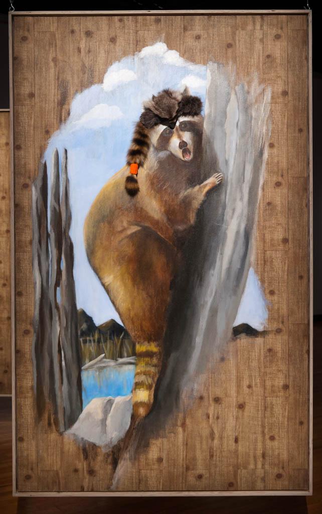 diane-dubeau-cible-raton-laveur-papier-peint-tableaux-de-chasse