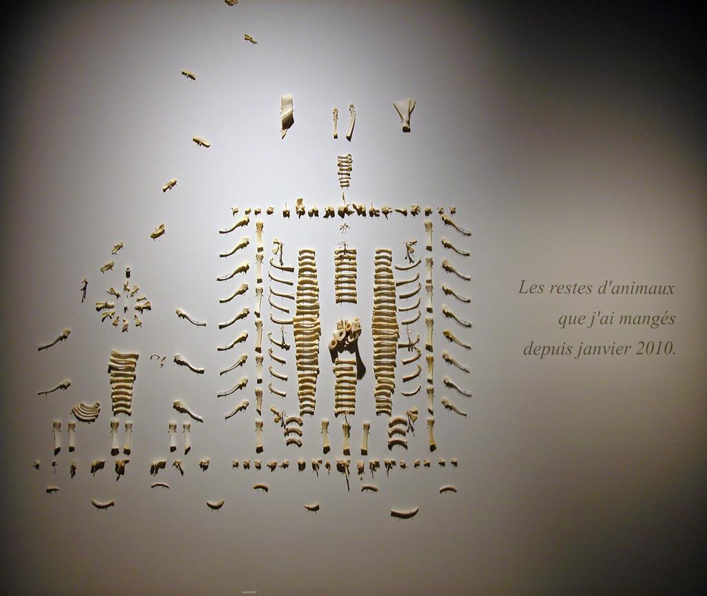 diane-dubeau-ossuaire-tableaux-de-chasse