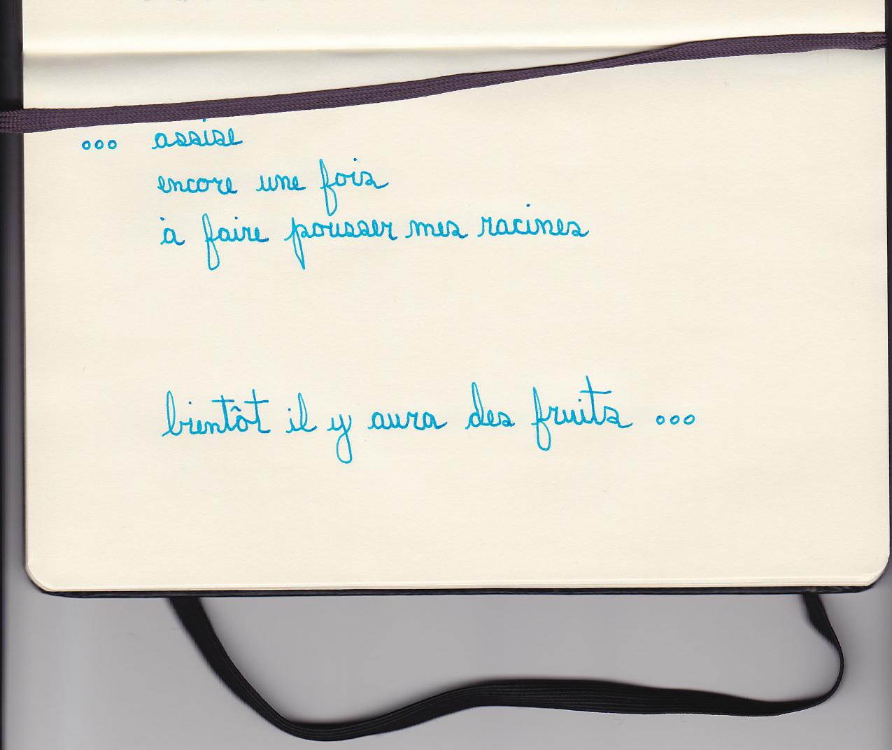 diane-dubeau-journal-d-atelier-reflexions-assises