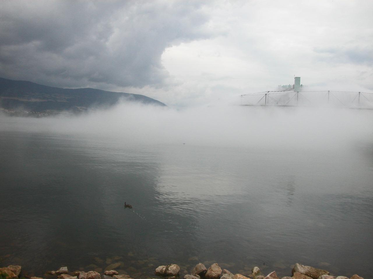 diane-dubeau-nuage-blur-building-diller-scofidio-15