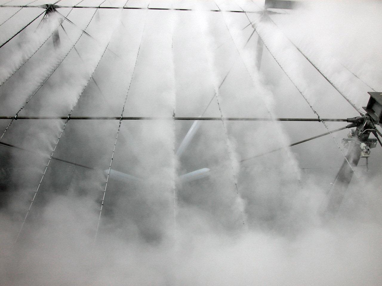 diane-dubeau-nuage-blur-building-diller-scofidio-6