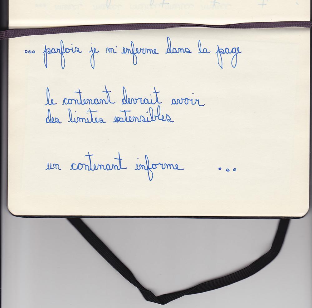 diane-dubeau-journal-d-atelier-reflexions-limite