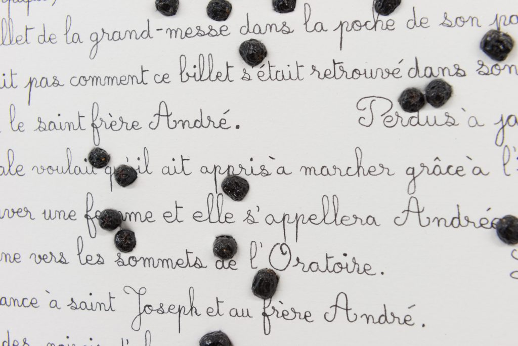 Triptyque, Messe au stade soulignant la béatification du frère André, Diane Dubeau, projet sur la démence