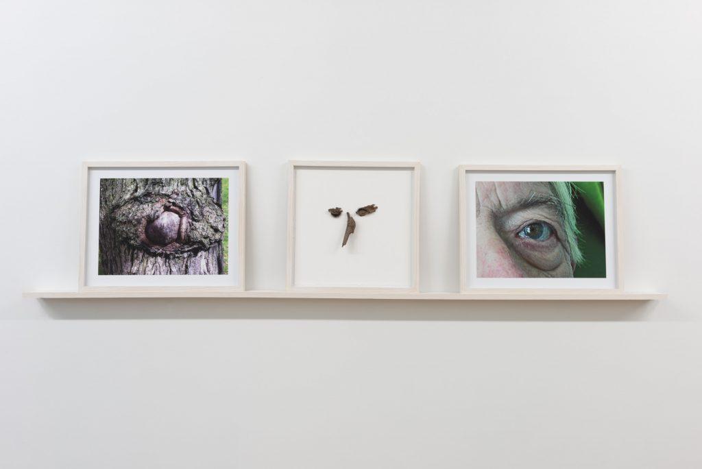 Diane Dubeau Triptyque de la représentation d'un oeil, projet sur la démence