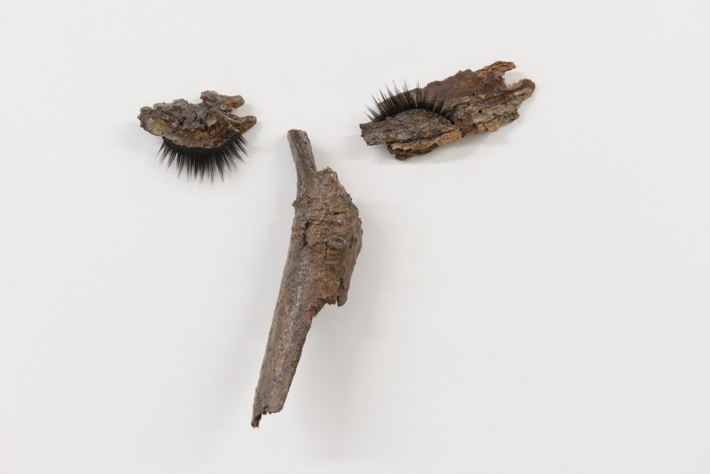 Diane Dubeau L'œil visage d'écorce avec faux cils, projet sur la démence