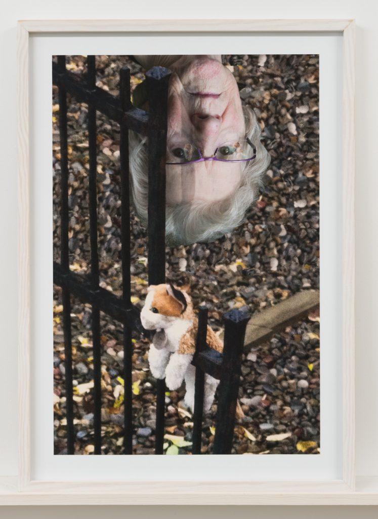 Un portrait de femme la tête à l'envers et une peluche accrochée sur une clôture Diane Dubeau Projet sur la démence