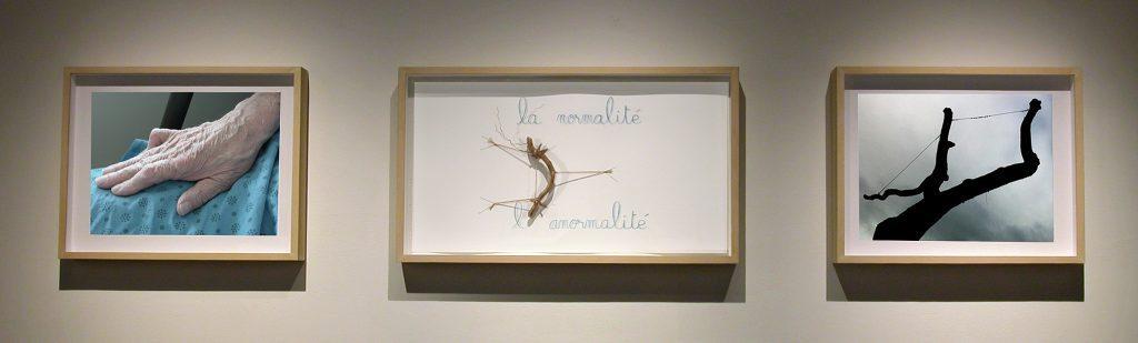 Triptyque, L'apostrophe, il ne manque qu'une apostrophe entre la normalité et l'anormalité, Diane Dubeau, projet sur la démence